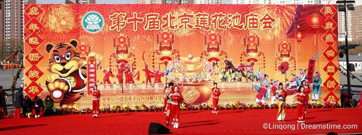Chinese new year celebration 2010