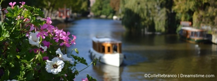 Boat in Canal with Flowers
