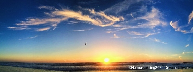 Pacific ocean sunset - a flying Phoenix