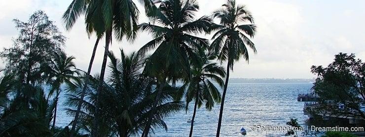 Coconut Trees and Seawaters at Donapaula, Panaji, Goa