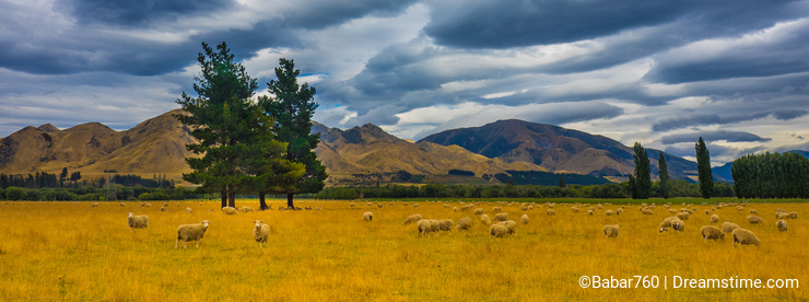 Stormy skies over sheep country