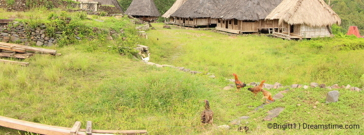 Wologai Traditonal Village, Ende