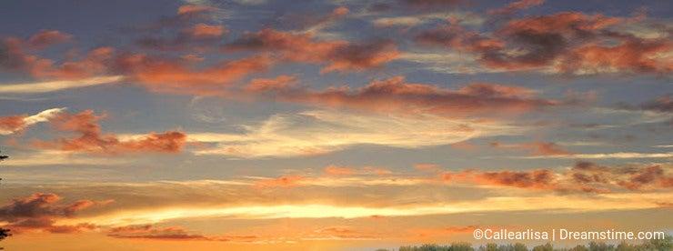 Illinois farming season round bales