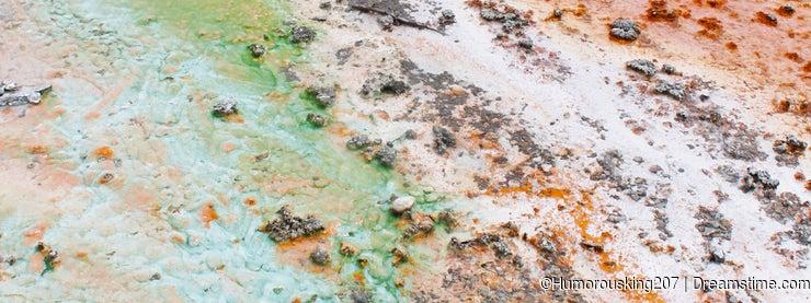 Bacteria carpet, Yellowstone national park