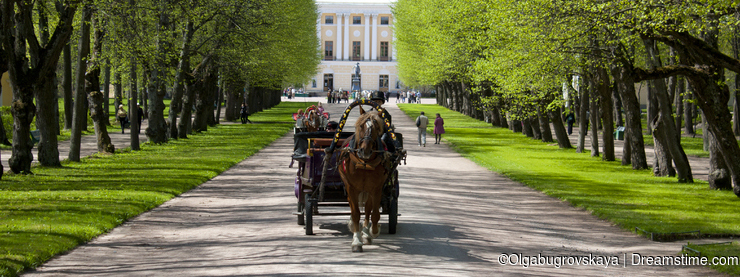 Carriage.Triple lime alley.Pavlovsk.Spring