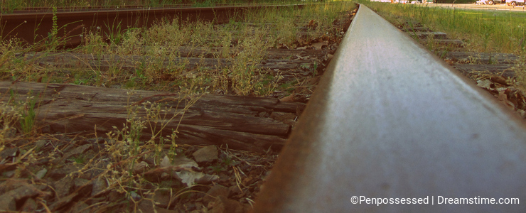 Isolate Train Tracks in Woods