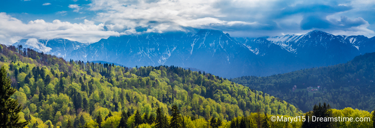 Romania, Predeal. the snowy Bucegi mountains and the green forests at their base seen from Predeal