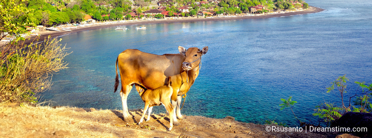 Mount Agung on Bali Island, Indonesia