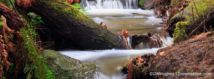 Hobbs Creek at Mystic Vale