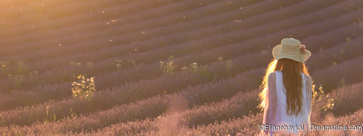 Overwhelmed in a Lavender Field