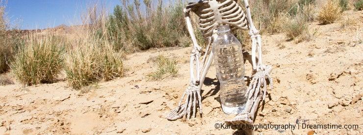 Skeleton Water Desert