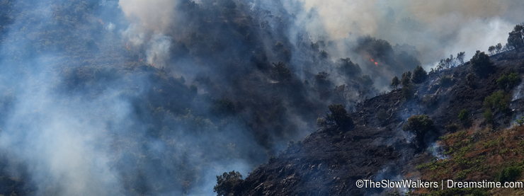 Wildfire begins to spread through the Spanish countryside between Sayalonga and Arenas.