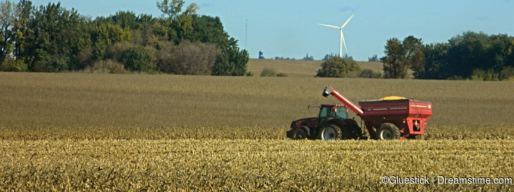 Iowa Farm Harvest