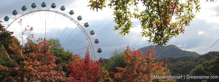 Autumn at Everland South Korea