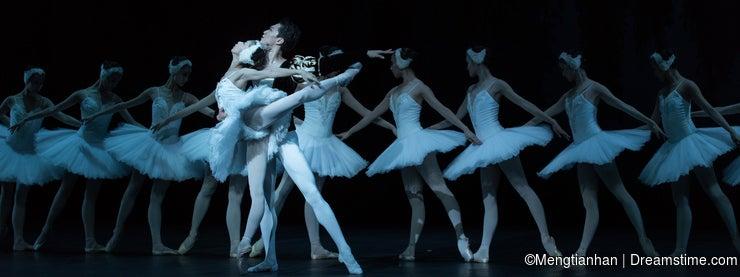 Flutter and soar high-Ballet Swan Lake