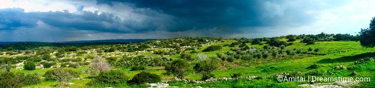 Holy Land Series - Israeli Winter scene Panorama 1