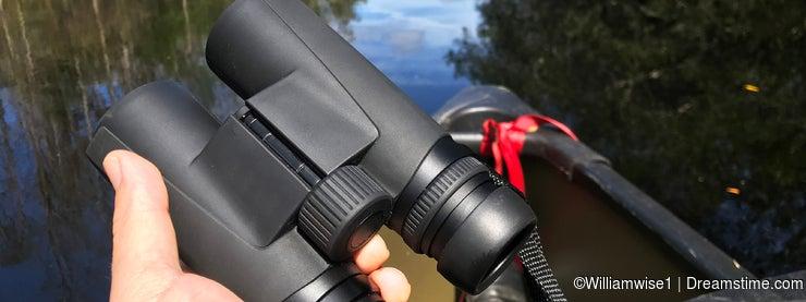 Birding with binoculars from a canoe in Okefenokee Swamp Georgia