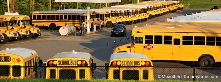Yellow school buses lined up