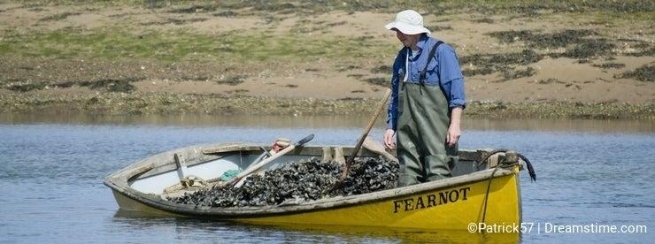 Mussel fisherman in boat.