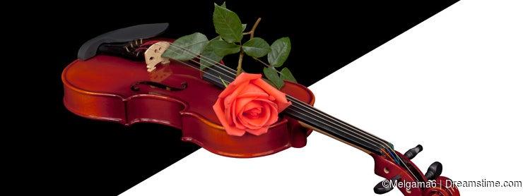 Violin in transparent background