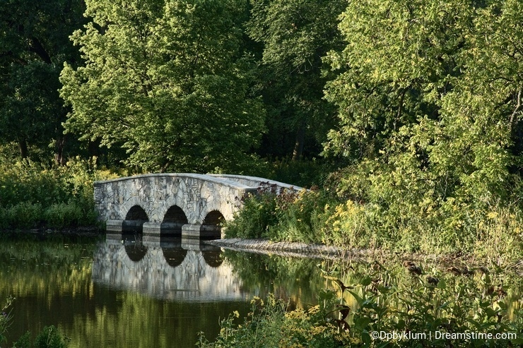 Reflecting Foot Bridge In a Park
