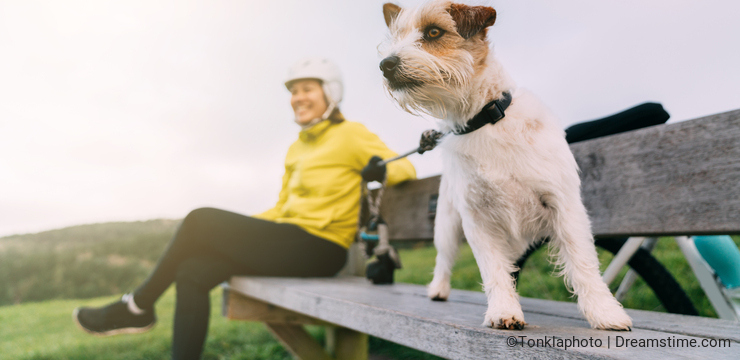 Asian woman making uphill with mountain bike. A woman looking around at lookout point with a dog at Oamaru, New Zealand