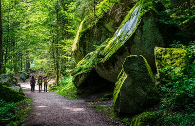 German Local Travel: The Black Forest's Beautiful Secret (Triberg Waterfalls, Germany)