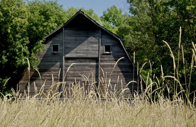 Viewing Rural America Through Rose-Colored Glasses