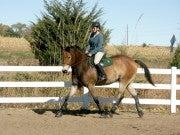 Karen Rubeiz (Cavallo)