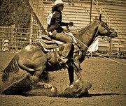 Kerry Terace (Cowgirlzenphoto)