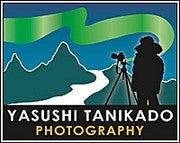 Yasushi Tanikado (Yasushitanikado)