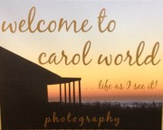 Carol Estes (Welcometocarolworld)