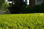 Gene  Caballero (Yourgreenpal)