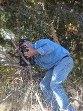 David  Clark (Ksphotogeek)