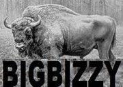 (Bigbizzy)
