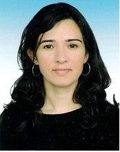 Ayse Seyhan (Ayseyhan)