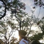 Pratima Booranaritthawee (Olindion)