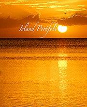 Terence Reis (Islandportfolio)