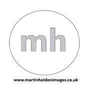 Martin Holden (Martinholdenimages)