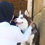 Nourhane Mamdouh (Nourhanee)