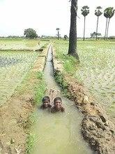 Srinivasan N (Srini27600310)