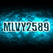 Michal Vyklicky (Mlvy2589)