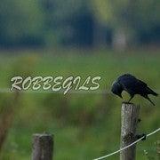 Robbe Gils (Robbegil)
