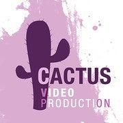 Anastasiia Shvets (CactusVP)