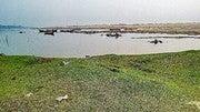 VIJAYAKUMAR YENUGUPALLI (Vijayakumaryenugupalli)