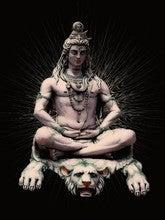 Rahul Badwaya (Rahul666)