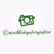 Hilal Dogan (Minikbirdogafotografcisi)