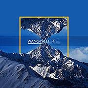 Wangyf1983