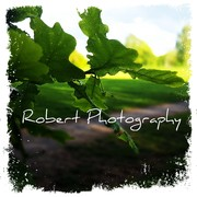 Robert Hyde (Robertphotography1)