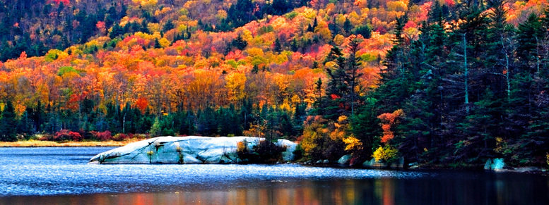 Stock photo: new england fall foliage